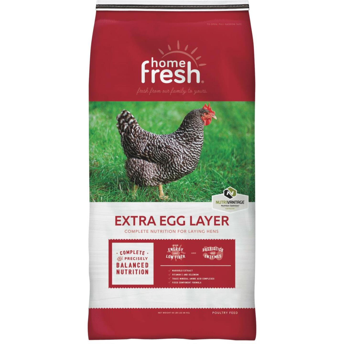 Blue Seal Home Fresh 50 Lb. Laying Chicken Feed Image 1